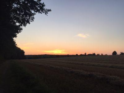 Sonnenuntergang bei Wadersloh
